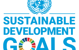 Sustainable Development Goals United Nations logo